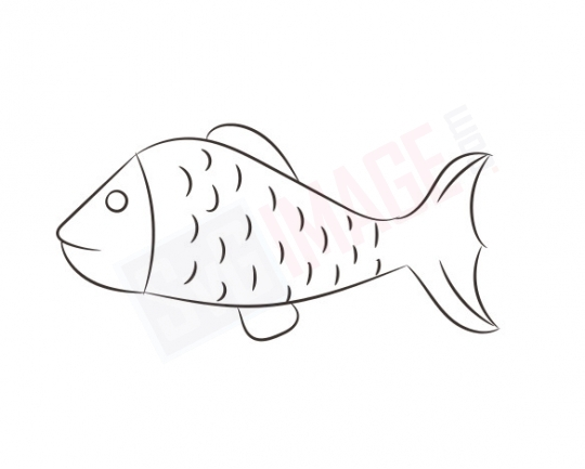 Fish SVG image - Fish Art line Vector drawing Illustration